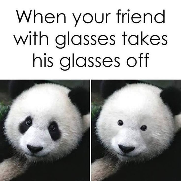 No Glasses Time ?     http://onlineclock.net/nature/  #Eyeglasses #Eyecare #Eyes #EyeDoctor #Optometrist #Ophthalmologist #Optometry #EyeHealth #Animals #Nature #AnimalsMood #AnimalStyle #AnimalsAddict #AnimalsLover #Vision
