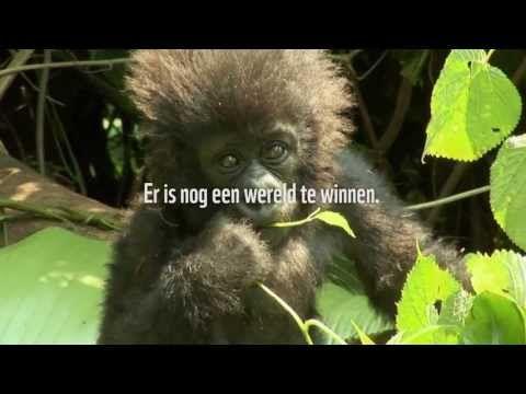 Wereld Natuur Fonds..Er is nog een wereld te winnen