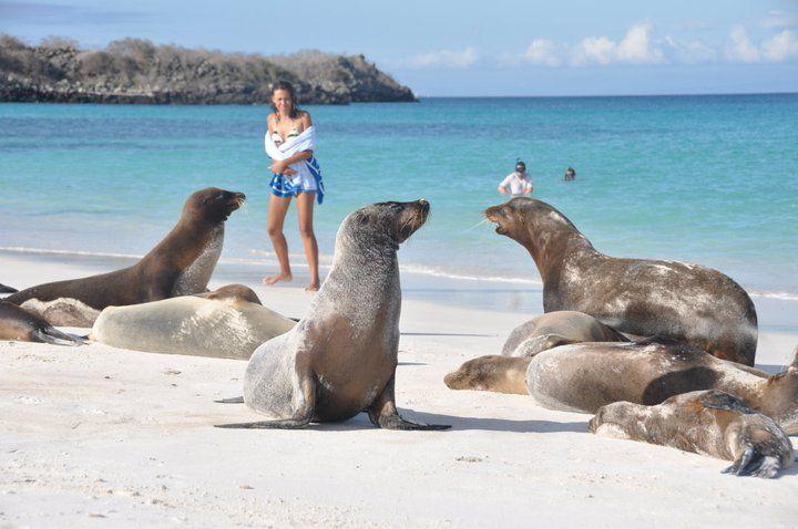 Ecuador, Galapagos, Peru & Bolivia. Adventuredk. Travling. Travel. Nature. Culture. Beach
