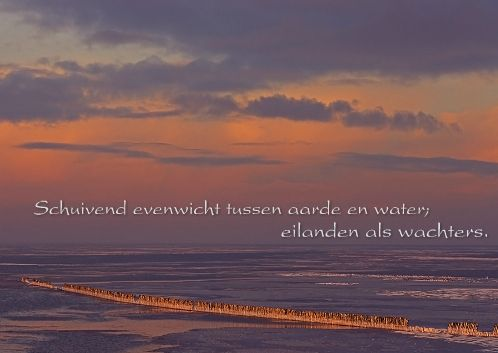 fotokaarten ansichtkaart wadden met foto Leo Vogelenzang en regel uit gedicht van Jan Atze Nicolai / fotokaarten postcard with picture of dutch Wad and line from a poem of Jan Atze Nicolai