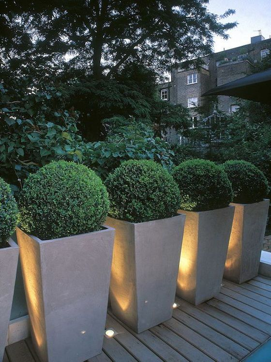 10 great examples of how to incorporate potted boxwoods in your landscaping | Love these boxwood in tall square planters | Visit the post for more fabulous photos