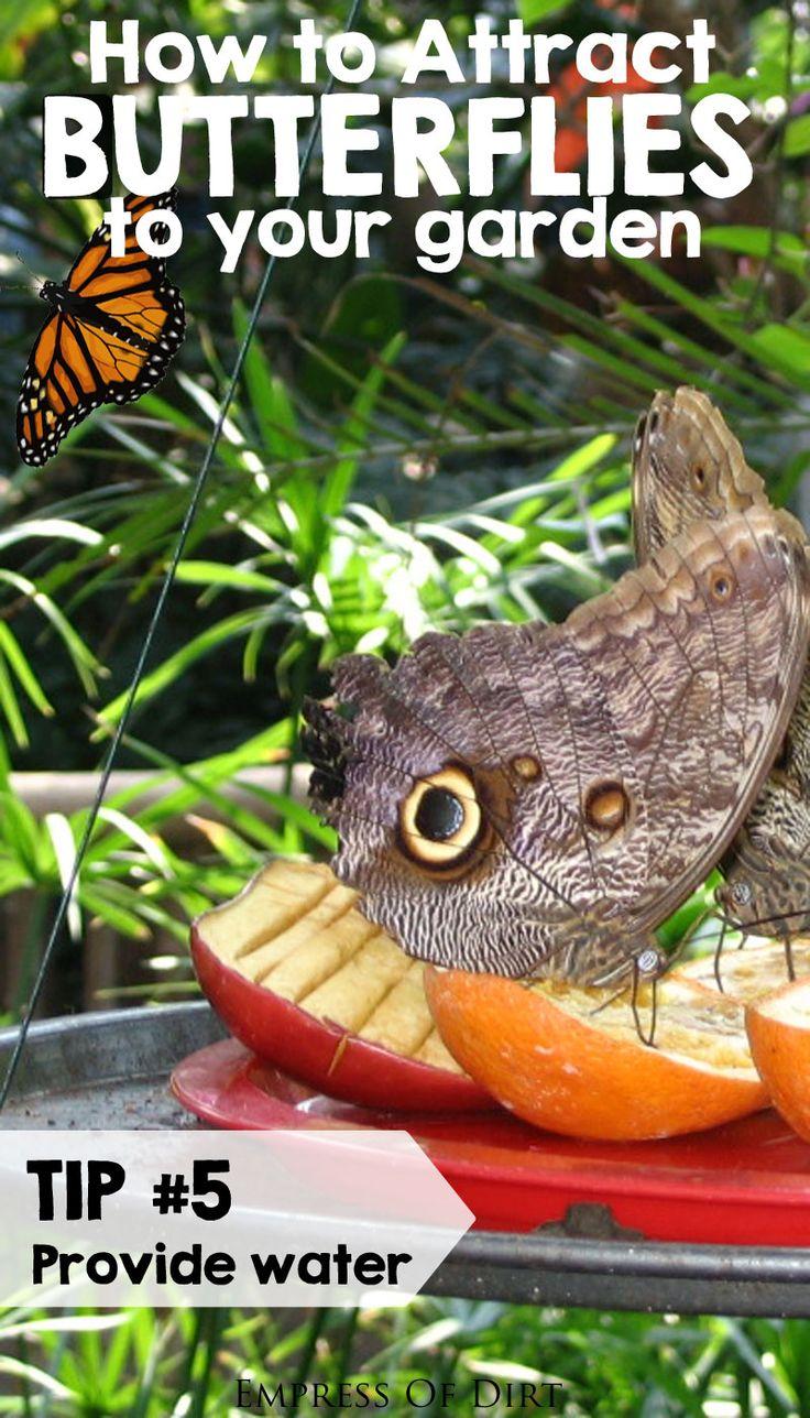 354 best wildlife garden ideas images on pinterest gardening