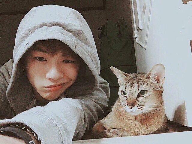 Kang Daniel | P101/WannaOne