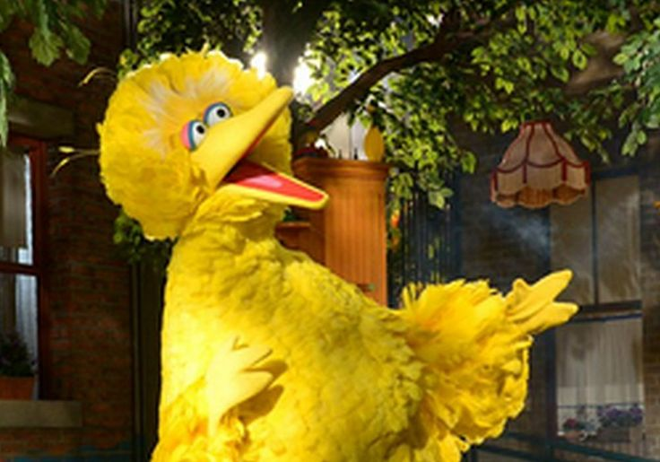 Big Bird Gets Special Shout Out On National Bird Day #BigBird, #SesameStreet celebrityinsider.org #Entertainment #celebrityinsider #celebritynews #celebrities #celebrity