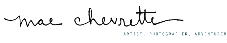 TO GO INTO THE WORLD :: the artwork of mae chevrette