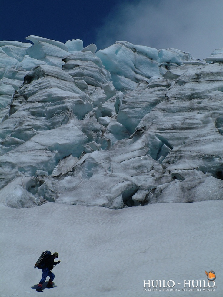 Trekking al Glaciar. Huilo Huilo