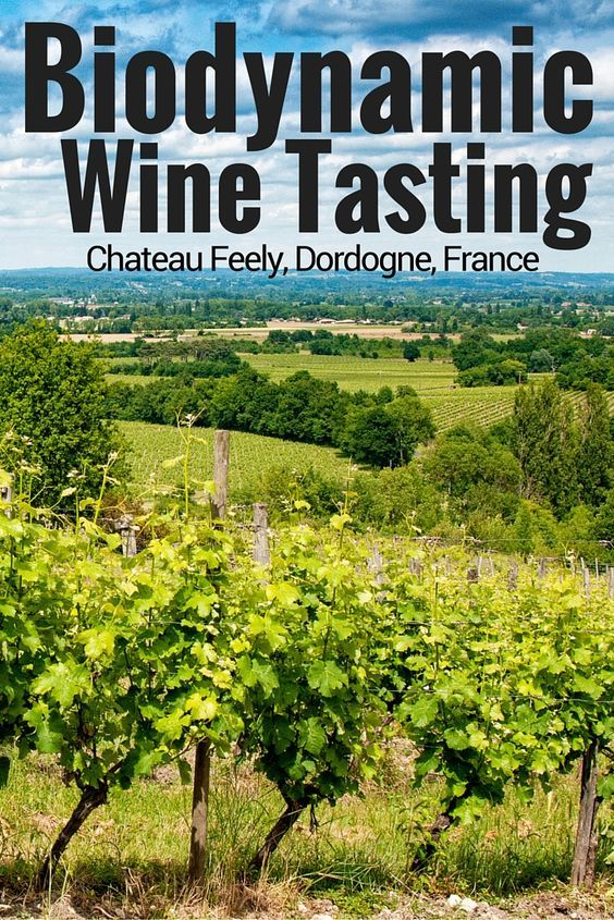 Château Feely is not your typical vineyard in #Dordogne, #France. We visited to find out why organic, biodynamic wines are so important and taste so good. #wine