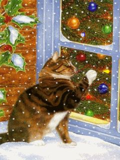 Cat got bored gifs gif cool images cat gifs holidays christmas gifs