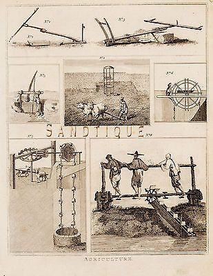 CALMET'S BIBLE DICTIONARY - AGRICULTURAL Engraving -1801