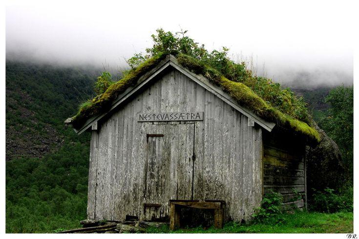 17 best images about cabane on pinterest belle cabin for Cabane exterieur bois