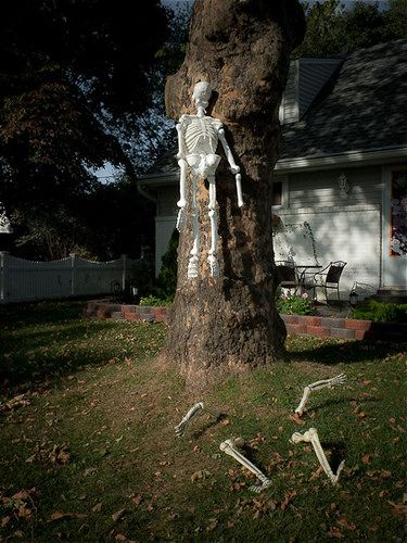 ghostly outdoor halloween decoration ideas for trees - Halloween Decoration Ideas For Yard