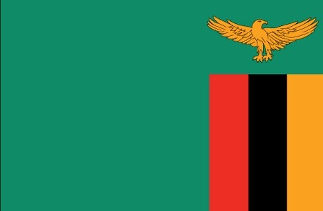 Zambia Apostille Service. If you, your company or your client needs an apostille, embassy legalization or authentication for Zambia look no further. Mobile Austin Notary can rush courier any type of TEXAS document at the Texas Secretary of State or any type of FEDERAL document at the U.S Department of State in Washington D.C. So if you live in Austin, Houston, Dallas, San Antonio, Fort Worth, El Paso or anywhere else in the world give us a call. www.notary.net/websites/notaryroundrock