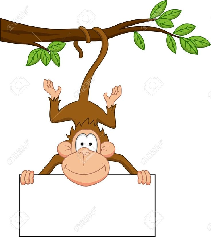 Monkey With Blank Sign Royalty Free Cliparts, Vectors, And Stock Illustration. Pic 13494839.