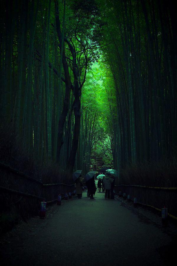 Arashiyama, Kyoto, Japan.