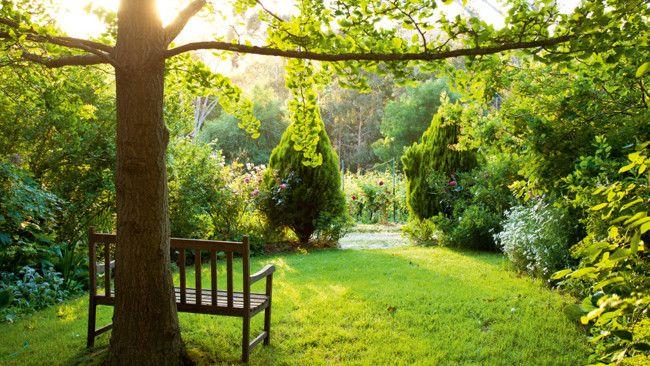 Winterwood Garden