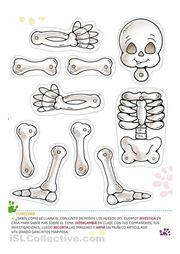 Skeleton FREE printable