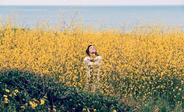 : Fields Of Flower, Tim Barbers, Flower Fields, Flower Beds, Summer Sunshine, Photography, Yellow Flower, Bambi Northwood Blythe, Mothers Natural