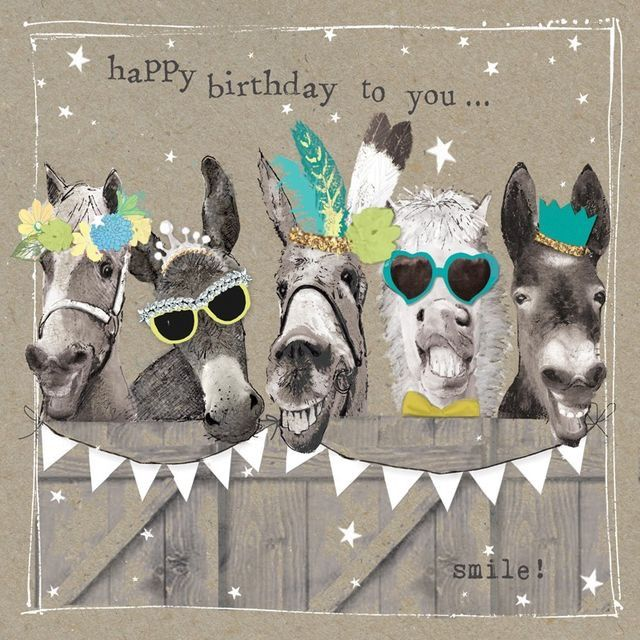 Pin By Kelly Rouse On Happy Birthday Happy Birthday Horse Happy Birthday Pictures Happy Birthday Video
