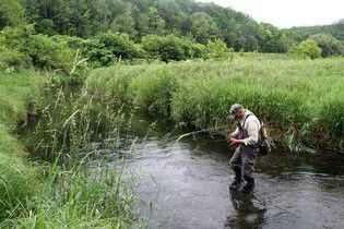 Trout fishing in the Driftless Area, Wisconsin