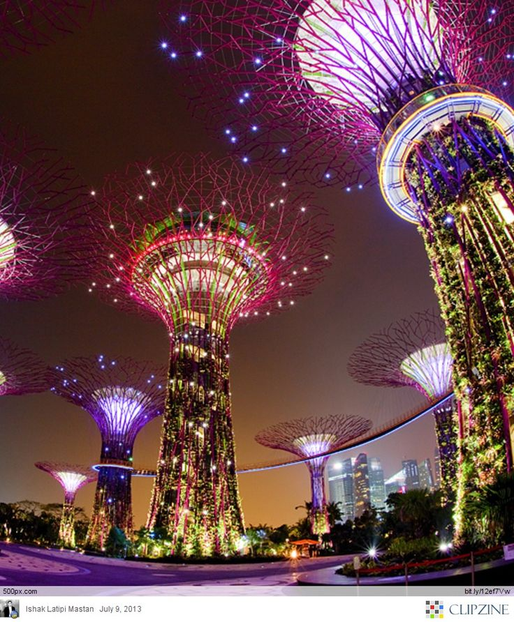 singapores supertrees at the gardens by the bay i see ill