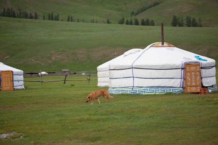 Mongolische Jurten Camp im Terejl Nationalpark