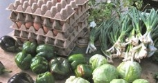 Cape Winelands Markets
