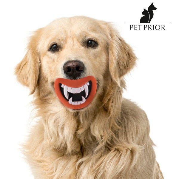 El mejor precio para Mascotas 2017 en tu tienda favorita:    https://www.compraencasa.eu/es/juguetes/79572-juguete-de-goma-con-sonido-para-perros-funny-pet-prior.html