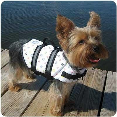 Puppy Life Jacket