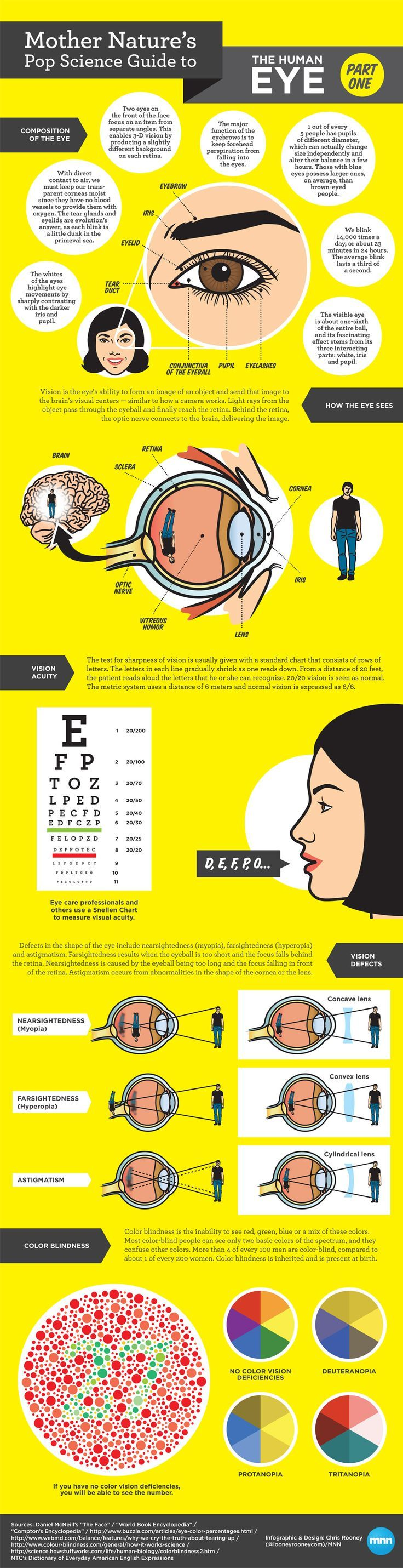 Mother Natures Pop Science Guide To The Human Eye Part 1 Infographic