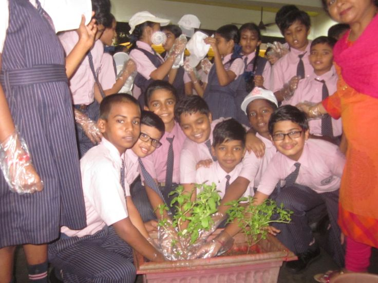 Tree planting is the process of transplanting tree seedlings  ,students of s.e.int.school  enjoy that activity with the help of teacher .