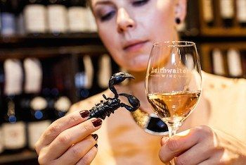The world's first insect and wine pairing guide
