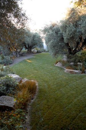 1000+ Images About Mediterranean Garden Design On Pinterest
