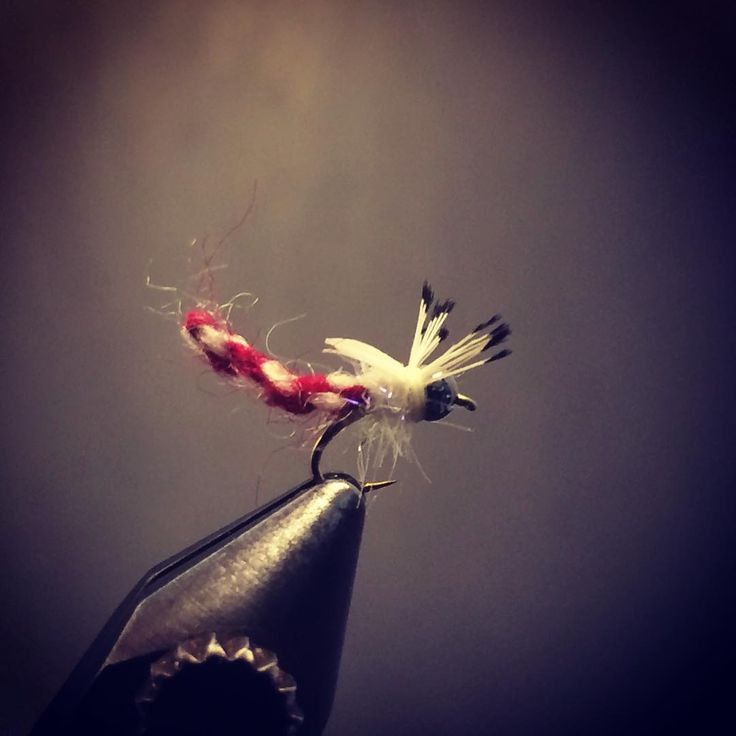 18 Tunghead Furled Yarn Midge #flytying #flyfishing #troutfishing #chironomid #midge #nymphing #renzetti #nymphhead #flymenfishingco #catchandrelease #orvis #dairiki #winterflyfishing #matchthehatch #catchandrelease #zeusoftrout #theflylab