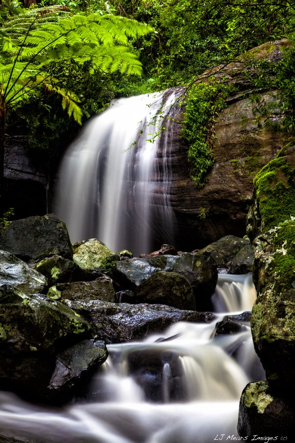 'Falls at Home'  Buderim Falls, Sunshine Coast, Australia - shutter control composition