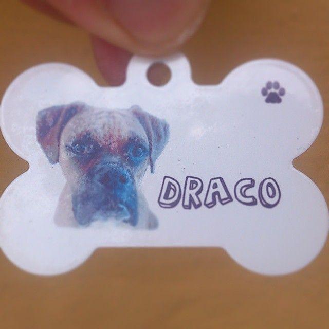 Placa con la foto de su mascota, en forma de hueso, en aluminio alta resistencia.  #PlacasParaMascotas #Perros #Hueso #Fotos #Mascotas #Cachorros #Identificacion #Bogota