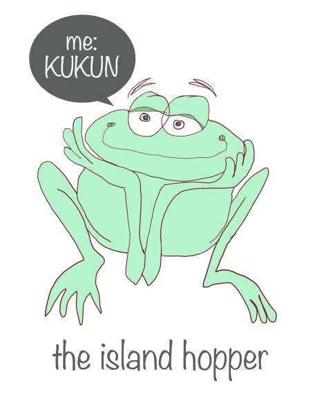 icon for island hopper 2014