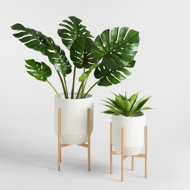 Tropical House Decor Tropicaldecor In 2020 Plant Decor Indoor Tropical Home Decor House Plants Decor