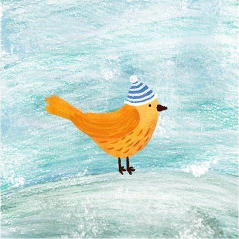 Winter time, winter birdie 🐦 ❄️