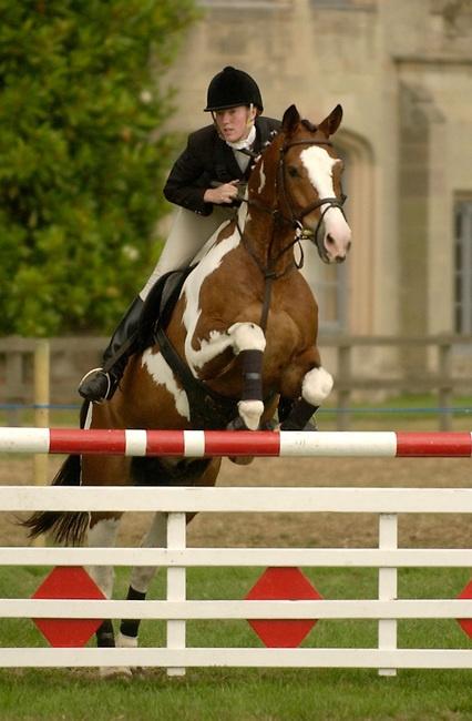 show-jumping-horse-0014.JPG | michael huggan photography