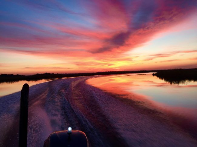 164 best creole nature outdoors images on pinterest for Lake charles fishing