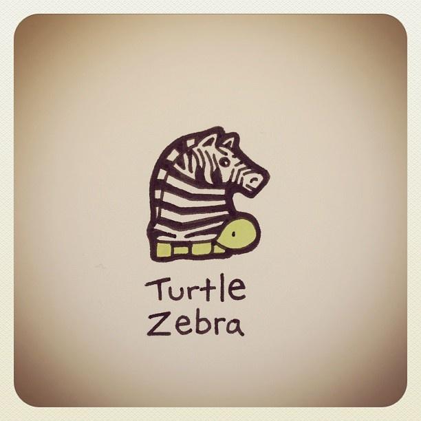 Turtle Zebra #turtleadayjune - @turtlewayne- #webstagram