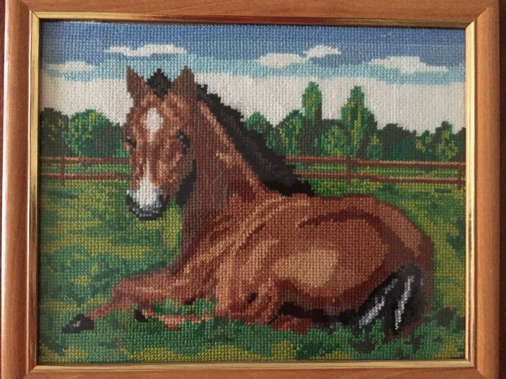 """Completed cross stitch, Home decoration, Framed cross stitch, Handmade embroidery -"""" Foal"""". Free shipping by NattikStudio on Etsy"""