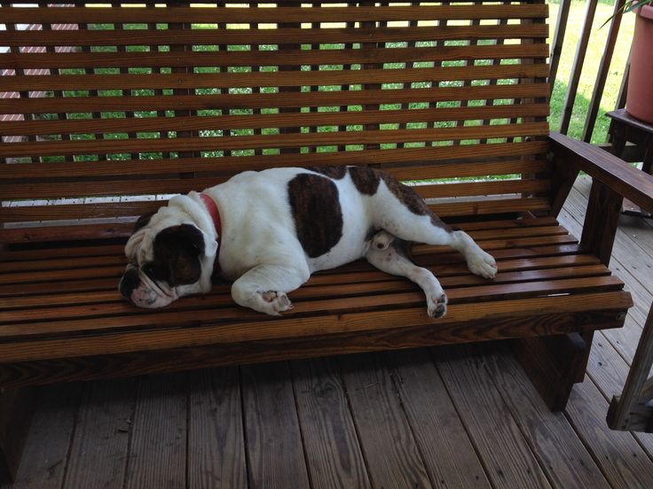 Chillin on the porch glider