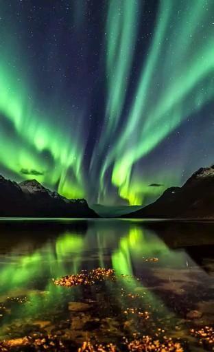 Northern Lights Tattoo, Northern Lights Wallpaper, Alaska Northern Lights, Lit Wallpaper, Alaska Wallpaper, Wallpaper Canada, Wallpaper Earth, Watch Wallpaper, Painting Northern Lights