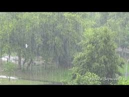 Fine and unique noise of a rain, white noise, relax sleep music, Relaxing sounds, relax, relaxation, relax sound, sound effects, relax and sleep, rain sounds, Natural Rain Sounds for Sleeping, nature sounds, nature sound, nature sounds from rural areas