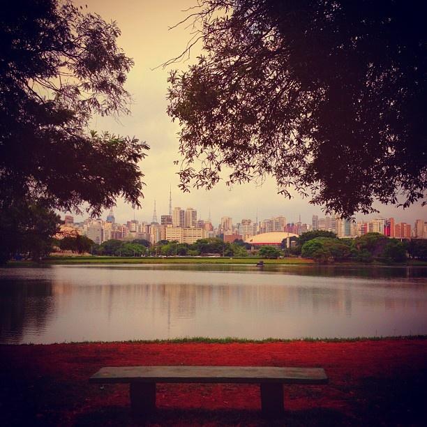 """Parque Ibirapuera (www.parqueibirapuera.org/) / v Pedro Álvares Cabral, s/n (portões 2, 3 e 10), Av IV Centenário - portões 6 e 7A, Av República do Líbano - portão 7 - São Paulo, SP / Passear de bike e recarregar as energias na """"Frutaria""""."""