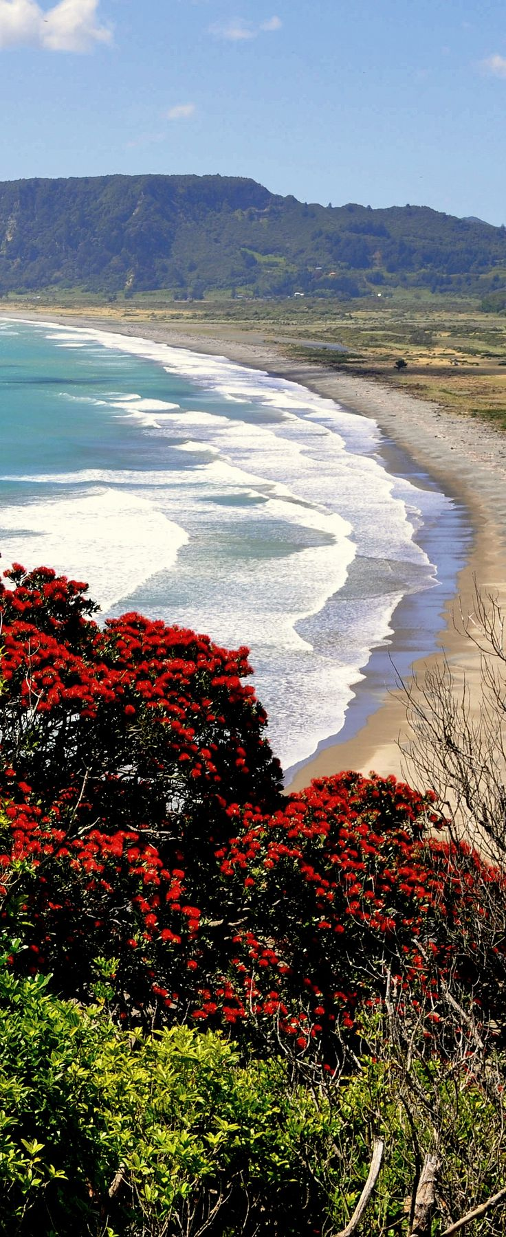 Hicks Bay is located on the East Cape, 186km from Gisborne of New Zealand