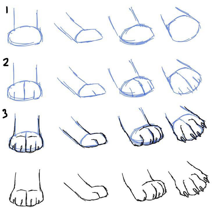 Google Image Result for http://3.bp.blogspot.com/-9xOdSD-hxek/UDQ3AmKi6RI/AAAAAAAAALg/MHAHSL1Bxyc/s1600/HowToDrawCatPaws.jpg