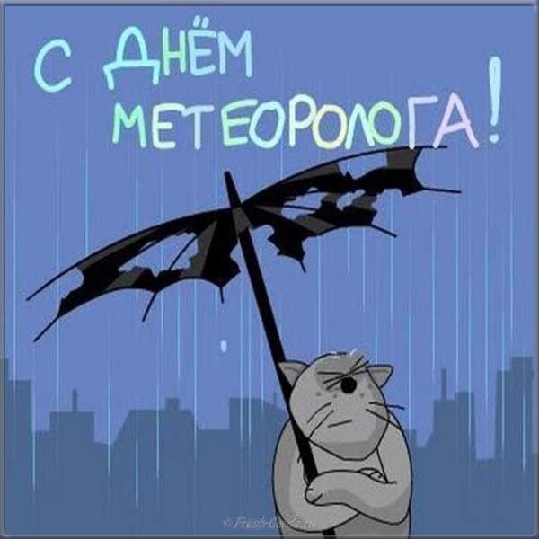 Смешные картинки о метеорологии сыпь