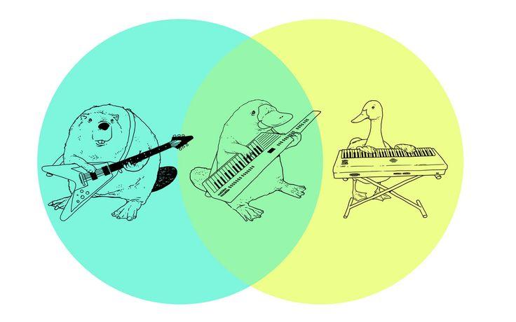 duck billed platypus keykar